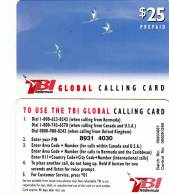 BERMUDA ISL. - Birds, TeleBermuda Prepaid Card $25(red Logo On Reverse), Used - Bermuda
