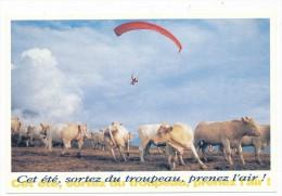 Série Drole D été - Tampon Espace Culturel Paul Ricard Sport  Parapente Alpes D Huez Cet été Sortez Du Troupeau - Parachutespringen