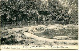 75005 PARIS - Jardin Des Plantes - Bassin Des Caïmans - Edition Louis Burgy 1903 - District 05