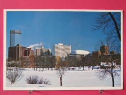 Carte Pas Très Courante - Etats Unis - Minnesota - Minneapolis - Snow Covered Loring Park - Scans Recto-verso - Minneapolis