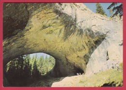 204200 / Rhodope  Rhodopen Rhodopes Mountain - AREA CHUDNITE MOSTOVE ( Wonderful Bridges)  , Bulgaria Bulgarie - Bulgarie