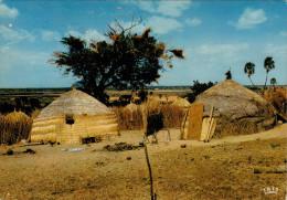 AFRIQUE  EN  COULEURS    VILLAGE   (VIAGGIATA) - Cartoline