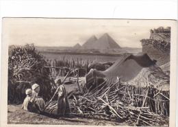 25682 Egypte Le Caire -Cairo Bedouin Camp -pyramide -ed 269 - Le Caire
