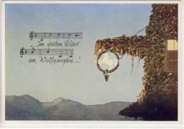 ST. WOLFGANG - Im Weißen Rössel ..., Feldpost  1942, Brief-Stempel V. Reserve Lazarett Vöcklabruck, - St. Wolfgang
