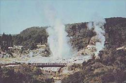 Rotorua       H3       Geysers , Whakarewarewa , Rotorua   ( Voir Timbre ) - New Zealand