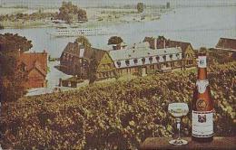 Nierstein      255       Weingut Louis Guntrum - Nierstein