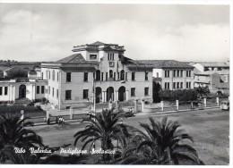 Calabria-vibo Valentia Veduta Padiglione Scolastico Anni/50 - Vibo Valentia