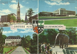 GERMANIA   NORDRHEIN- WESTFALEN  GELSENKIRCHEN  Multiview  Zoo - Gelsenkirchen