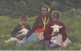 POSTAL DE NAVAJO MOTHER AND DAUGHTERS PETTING THEIR LAMBS (INDIO) (SOUTHWEST POST CARD) - Indios De América Del Norte
