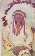 POSTAL DE WESTERN INDIAN CHIEF (JEFE INDIO) - Indios De América Del Norte