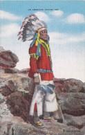 POSTAL DE AN AMERICAN INDIAN  (JEFE INDIO) - Indios De América Del Norte