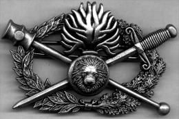 Brevet Métallique Insigne Vareuse Diplome D'Arme Gendarmerie Mobile LR PARIS - Police & Gendarmerie