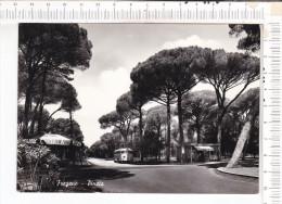 FREGENE    -   Pineta   -   Autocar - Roma (Rome)