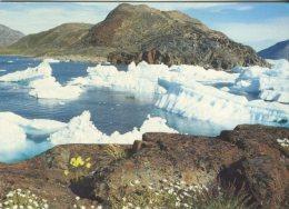 Grønlands Born Foreningen Postcard, Ikerasak, Grønland, Foto: Rolf Müller - Greenland