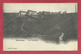 Silenrieux - Les Fostelles - 1906 ( Voir Verso ) - Cerfontaine
