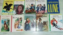 Lot De 10 Livres Serie Rose, Verte, Rouge Et Or, Et Charpentier, .... Les Misérables Cosette, David Copperfield, Aliette - Books, Magazines, Comics