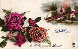 BELGIQUE - FANTAISIE - Souvenir De Hollogne-aux-Pierres. - Souvenir De...