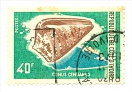 Ivoire-316u. Sello Usado Costa De Marfil. Yvert Nº 316. Fauna Marina. Conus Genoanus - Costa D'Avorio (1960-...)