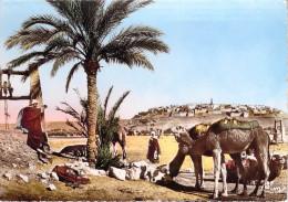 Algérie (Scènes Et Types Collection Artistique L'Afrique) L'Abreuvoir Près Du Puits(Cpsm-CIM Cliché PROUHO 492)PRIX FIXE - Scenes