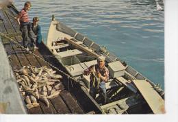 SAINT-PIERRE-ET-MIQUELON, Saint-Pierre, Pêcheur Livrant Le Poisson, Enfants, Barque, Ed. Jean Briand 1978 - Saint-Pierre-et-Miquelon