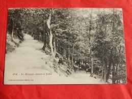 SPA  -   La Montagne Annette Et Lubin  -   (2 Scans) - Spa