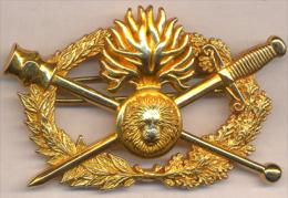 Insigne Métallique BREVET DIPÔME D'ARME GM D.Q.S.G  QUALIFICATION SUPÉRIEURE GENDARMERIE - Police & Gendarmerie