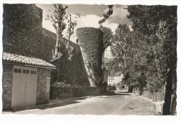 LE MALZIEU - LES FORTIFICATIONS  CPSM 9X14 - Autres Communes