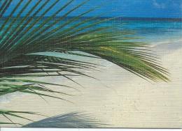 Calendrier De Poche/Etablissements Marteau/Plomberie/Ivry La Bataille, Eure/1993        CAL266 - Calendars