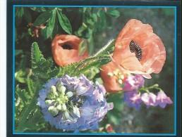 Calendrier De Poche/Carte De Voeux / GRUGE/Nogent Le Roi/1988       CAL268 - Petit Format : 1981-90