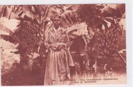 Martinique - Une Campagnarde Endimanchée Dans La Bananerie - Martinique