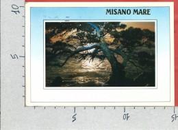 CARTOLINA VG ITALIA - MISANO MARE (RN) - Incanto Della Riviera Adriatica - Tramonto - 10 X 15 - ANN. 1986 - Rimini