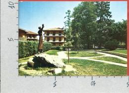 CARTOLINA VG ITALIA - TREVIGLIO (BG) - Monumento A S. Francesco - 10 X 15 - ANN. 1981 - Bergamo