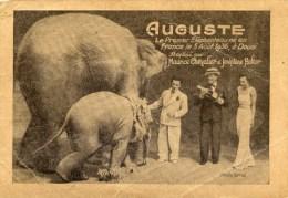 Auguste Elephant Joséphine BAKER Maurice CHEVALIER  En L´état - Artistes
