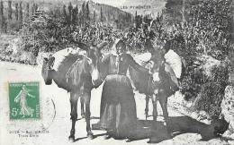 Les Pyrénées - Sur La Route, Trois Amis: Paysanne Avec Ses Deux ânes - Agriculture