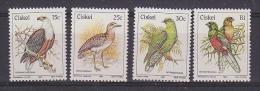 Ciskei 1981 Birds 4v ** Mnh (27522) - Ciskei