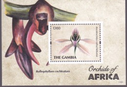 Gambia 2011, Postfris MNH, Flowers, Orchids - Gambia (1965-...)