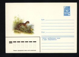 USSR 1980 Postal Cover Fauna Least Weasel  (221) - Autres