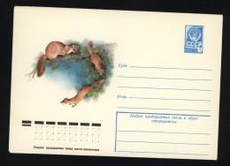 USSR 1978 Postal Cover Fauna Marten (229) - Autres