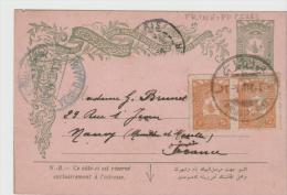 Tur103 / Türkei -  Mi.Nr. P 20 Mit Zusatzfrankatur Nach Frankreich Von Den Prinzen Inseln - Interi Postali