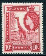 Kenya, Uganda & Tanganyika 1954-59 QEII Definitives - 10c Giraffe MNH - Kenya, Uganda & Tanganyika