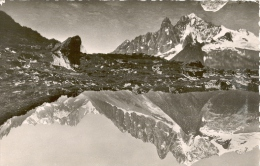 Carte Postale De Chamonix ( Haute Savoie )  Le Lac Blanc Et L'aiguille Verte - Chamoux Sur Gelon