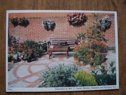 51129 POSTCARD: Patio - Submitted By Mrs T. Clarke, Morton, Fiskerton And Rolleston W.I. - Postcards