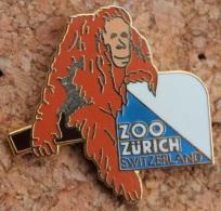 ZOO DE ZURICH - SCHWEIZ - SUISSE - SWITZERLAND -  SINGE - ORANG-OUTAN   - (8) - Animals