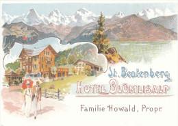 HOTEL BLUMLISALP  - ST. BEATENBERG -  SUISSE -  Non Circulée - Switzerland