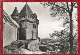 BIRON  - Dépt 24 - Le Château - Tour De Garde (XVè S) - CPSM - Photo Véritable - TBE - Other Municipalities