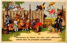 CHATS COSTUMES 53735 / 8 - Animali Abbigliati