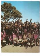 AFD.0133/ Oudjila - La Grande Salutation Au Chef Après La Danse - Femmes Seins Nus - Camerún