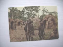 Congo Kinshasa Zaire Kivu Kahuzi Pygmees - Congo - Kinshasa (ex-Zaïre)