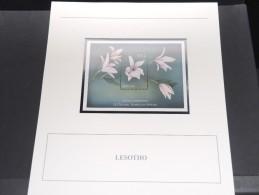 LESOTHO - Bloc Luxe Avec Texte Explicatif - Belle Qualité - À Voir -  N° 11664 - Lesotho (1966-...)