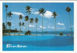 ìle Tropicale De Bintan Au Large De Singapour,  Carte Postale Neuve, Non Circulée - Indonesia